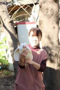 Niwatori1